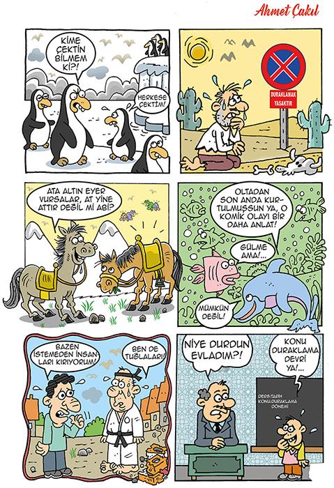 şenlik karikatür