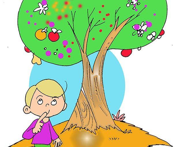 aşure ağacı