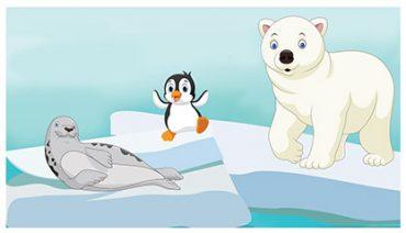 Hayvanlar Buzullarda Nasıl Yaşar?